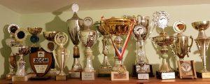 גביעים ומגינים שנצברו לאורך השנים בתחרויות לאומיות ובין לאומיות. במרכז, אלוף העולם בשנת 1999